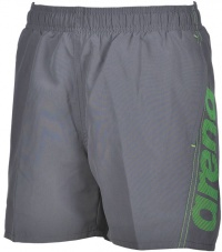 Arena Fundamentals Arena Logo Boxer Junior Grey/Green